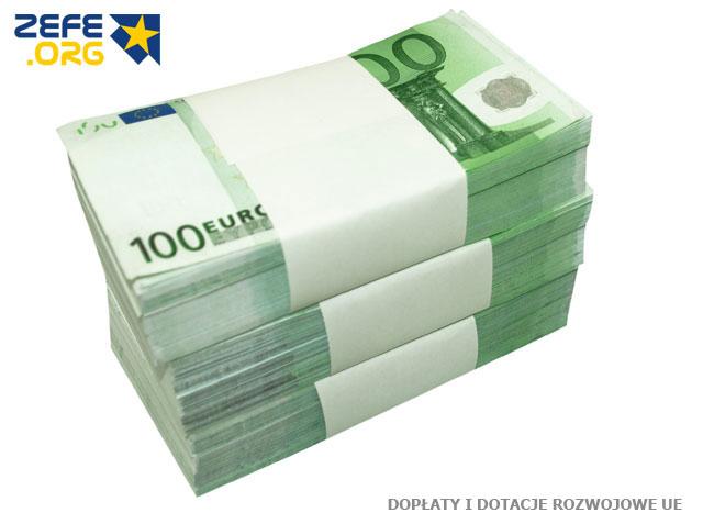 dopłaty i dotacje rozwojowe UE