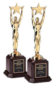 promocja w internecie - nagroda webstar dla lublin.eu